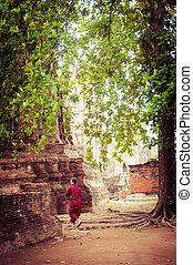 Buddhist monk at ancient ruins of Wat Mahathat. Ayutthaya,...