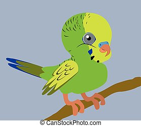 Budgie - An Illustration of a green budgie