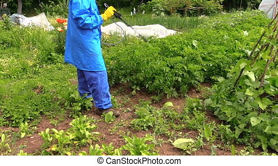 man spray pesticides - Farmer man in blue protective clothes...