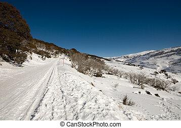 Winter Scene - A Winter scene near the picturesque ski...
