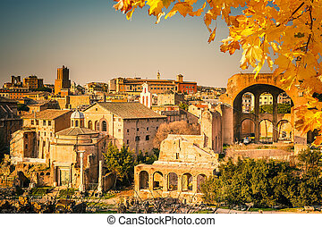 Ruins of Forum in Rome