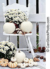 White Pumpkins and Mums - Beautiful white pumpkins and mums...
