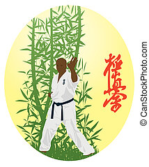 the man shows karate - The illustration, the man shows...