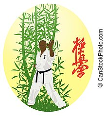 The illustration, the man shows karate on a bright background
