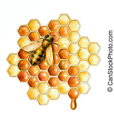 Bee and honey - A bee filling the hive cells with fresh...