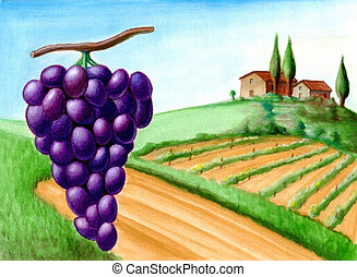 Grape and vineyard. Wine label illustration.