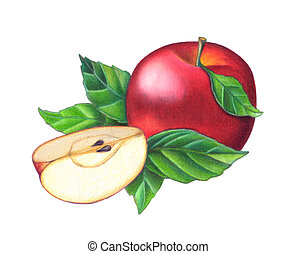 Red apple - A composition of a full red apple and a sliced...
