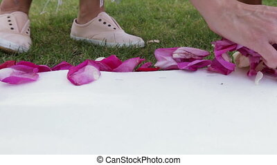 Rose petals on track - Unfolding rose petals on white track
