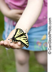 Look Mom - a little girls hand holding a swallowtail...