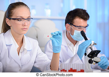 Laboratory - Two scientists conducting research in a lab...