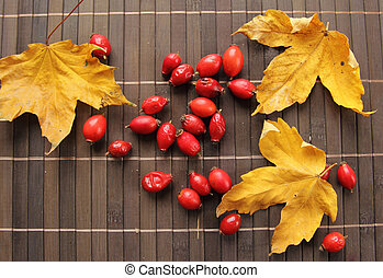 autumn leaves on the table