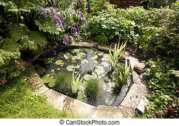 garden ornamental pond with water lillys and flowers