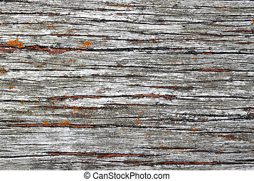 Old weathered wood texture natural background.