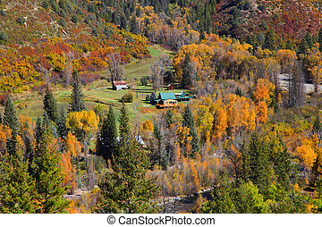 Autumn landscape in Colorado - Aerial view of autumn...