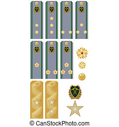 Insignia Customs Service of Russia