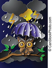 Owl holding an umbrella in the rain