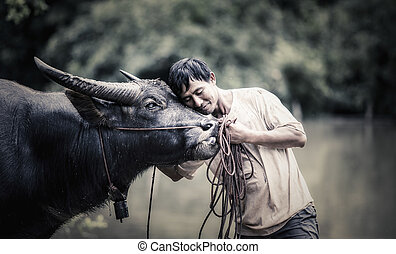 Thai Farmer with buffalo