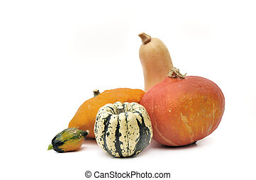 various squashes isolated on white background