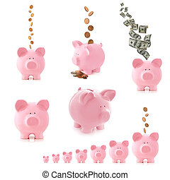 Piggy Bank Collection Isolated