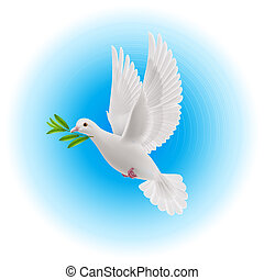 Dove of peace - White dove flying with olive twig in its...