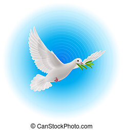 Dove of peace - White dove flying with olive branch in its...