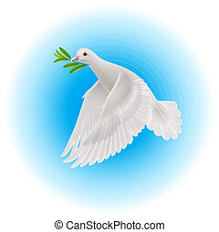 Dove of peace - White dove flying with green branch in its...
