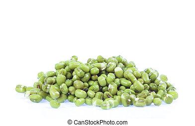 Closes – up green bean.