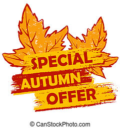 special autumn offer with leaves, orange and brown drawn...