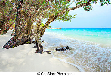 beautiful beach of Ao Wai Koh Samen sea national park in...