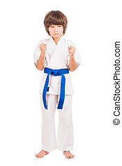 Karate. Little boy dress karate uniform isolated on white