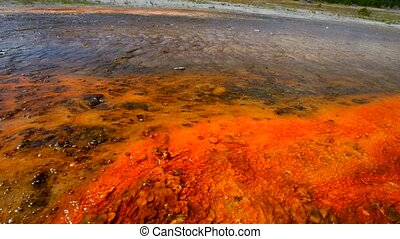 Geyser Bacteria Close-up - Colorful Layers of microorganisms...