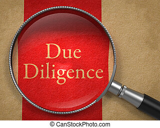 Due Diligence through Magnifying Glass. - Due Diligence...