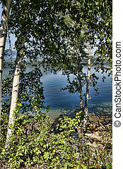 Glacial Lake and Birch Trees - Beautiful blue glacier-fed...