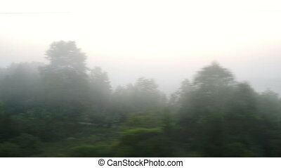 Passing by a village in fog