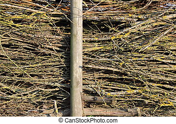 Stacked brushwood - A wall or fence of stacked brushwood