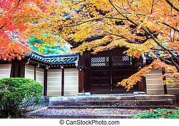Autumn Colors in Eikando Temple, Kyoto, Kansai, Japan for...