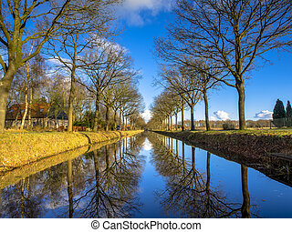 Row of Trees reflecting in a long Straight Canal in the Netherla