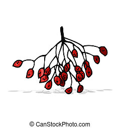 winter berries illustration