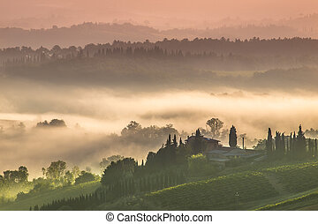 Tuscany Village Landscape on a Morning in July - Cypress on...