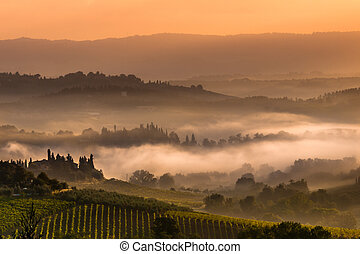 Tuscan Village Landscape on a Foggy Morning - Cypress on the...