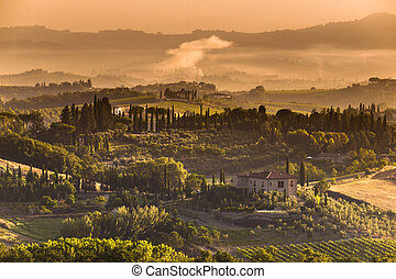 Tuscany Village landscape Scenery - Cypress on the Hills of...
