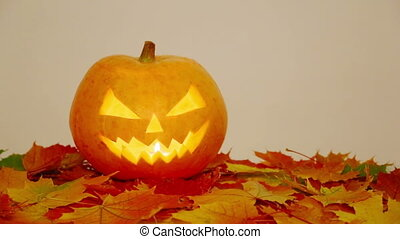Halloween pumpkin on autumn leaves