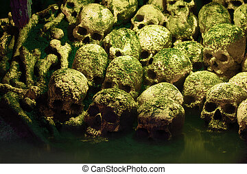 Human skulls - Human sculls, bones and skeletons in green...