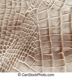 Crocodile skin texture - Crocodile skin for texture and...