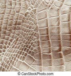 cocodrilo, piel, textura
