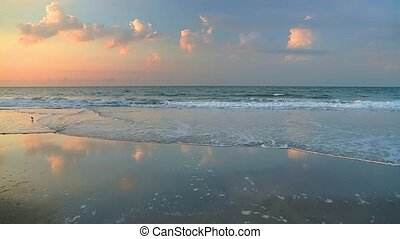 Morning Surf Loop - Waves break on a sandy beach in colorful...