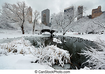 Central Park winter with skyscrapers and bridge in midtown...