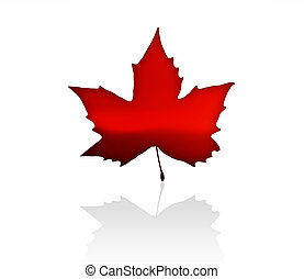 Canada - The Flag of Canada with maple leaves