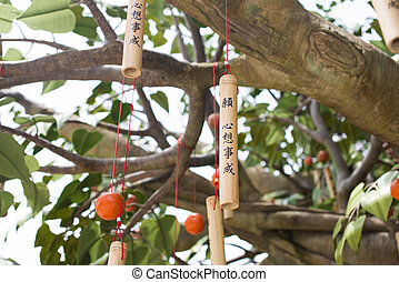 wishing tree is ngong ping villeage, lantau island, hong...