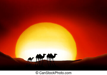 Sahara Desert - lonesome Animals in a sunset of the sahara...